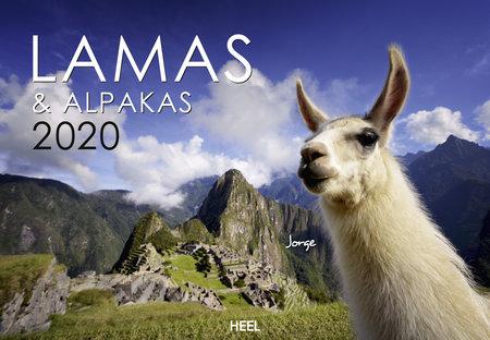 Kalendercover Lamas und Alpakas 2020 vom Heel Verlag