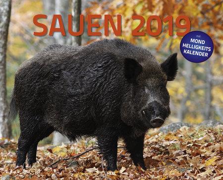 Cover Feuerwehr-Kalender 2019 vom Heel Verlag